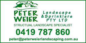 peter-weier