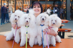 [CLOSED]WIN: Double Passes To The Brisbane Dog Lovers Show Up For Grabs